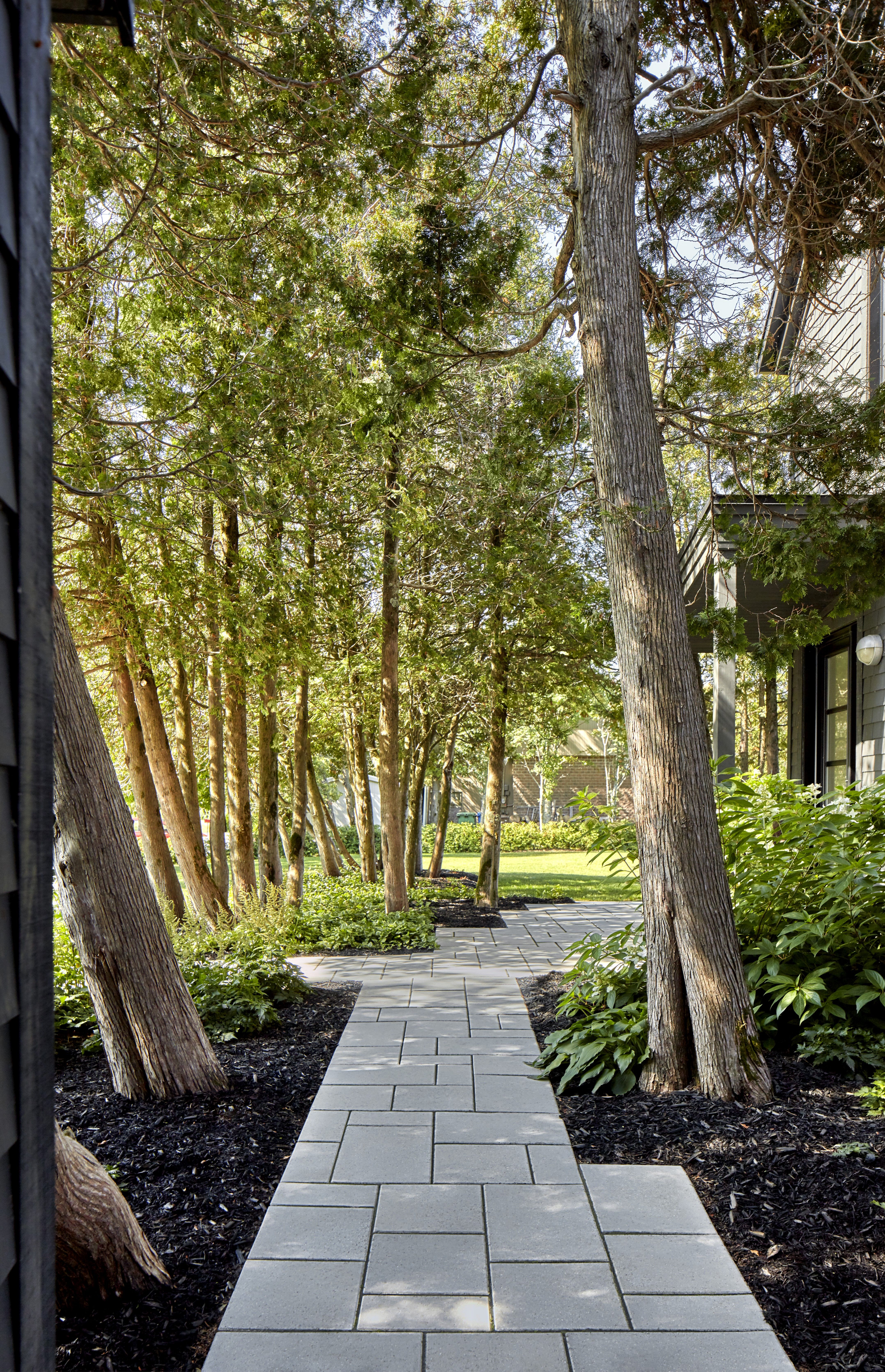 Walkways To Front Door Walkway Design Walkway Landscape Pavers