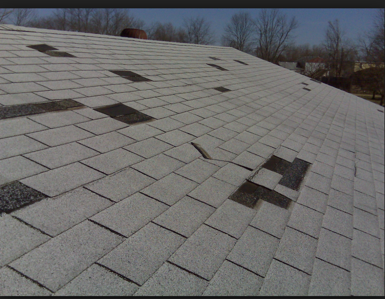 Wind Damaged Shingles Are Not Only A Major Cause For A Roof Leak But Also A Good Cause To Get The Insurance Company To Replac Roof Shingles Roofing Roof Damage