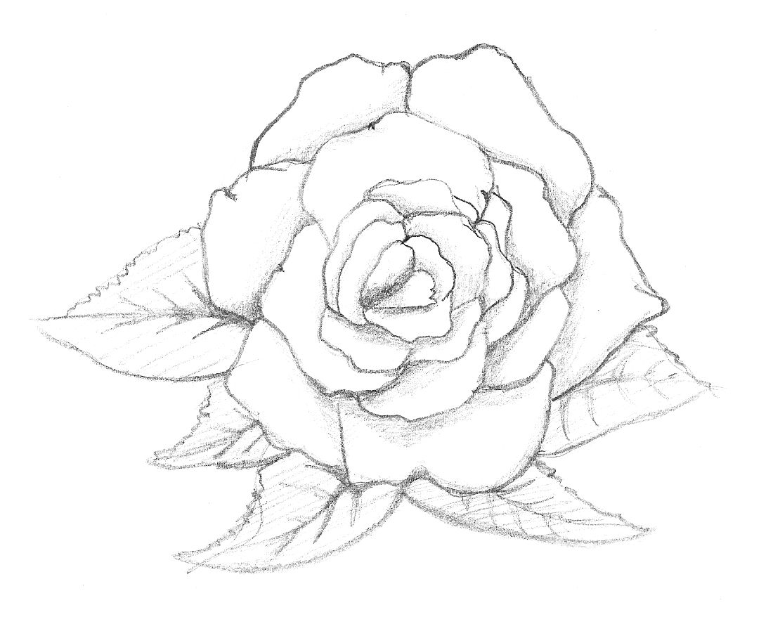 Easy Realistic Eye Coloring Coloring Pages