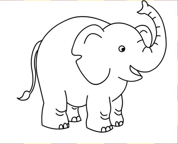 Preschool Elephant Coloring Page For Kids Free Binatang Gambar