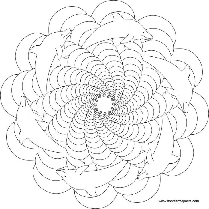 Trippy Dolphin Mandala Coloring Page For Grown Ups