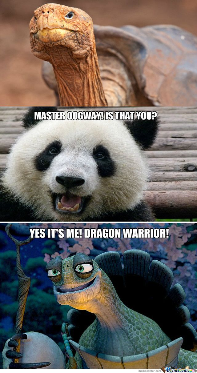 Master Oogway With Images Master Oogway Dragon Warrior Kung