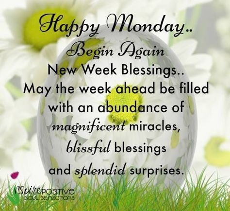 Good Morning Monday Quotes Monday monday good morning monday quotes good morning quotes happy  Good Morning Monday Quotes