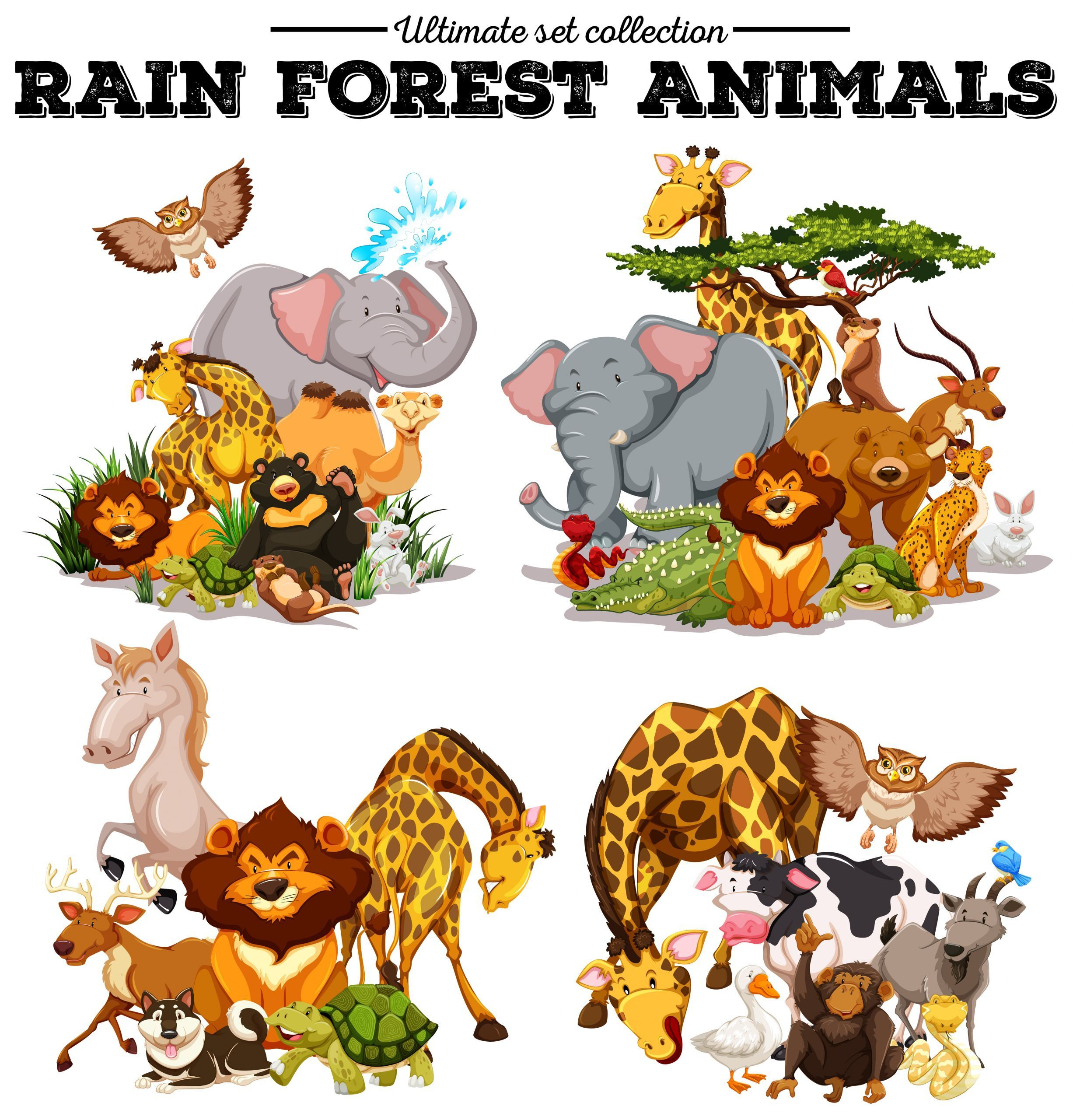 7 Forest Animals Preschool Worksheets Rainforest Jaguars