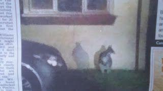 ghostman: MINI SKIPPY VISITS GLOUCESTERSHIRE