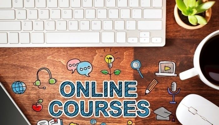 Can I get a job with online courses? | Vitamin of Success