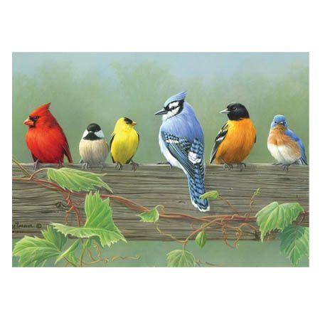 Peinture A Numeros Oiseaux Perches Deserres Peinture Oiseau