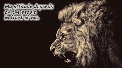 High Attitude Status For Whatsapp Lion Wallpaper Lion Hd