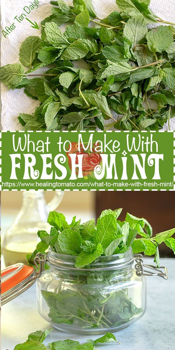 What to make with fresh mint?  The best mint recipes all in one place #healingtomato #mint #freshmint #mintrecipes @healingtomato