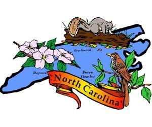 Image of the North Carolina State Symbols | 4th Grade Social ...