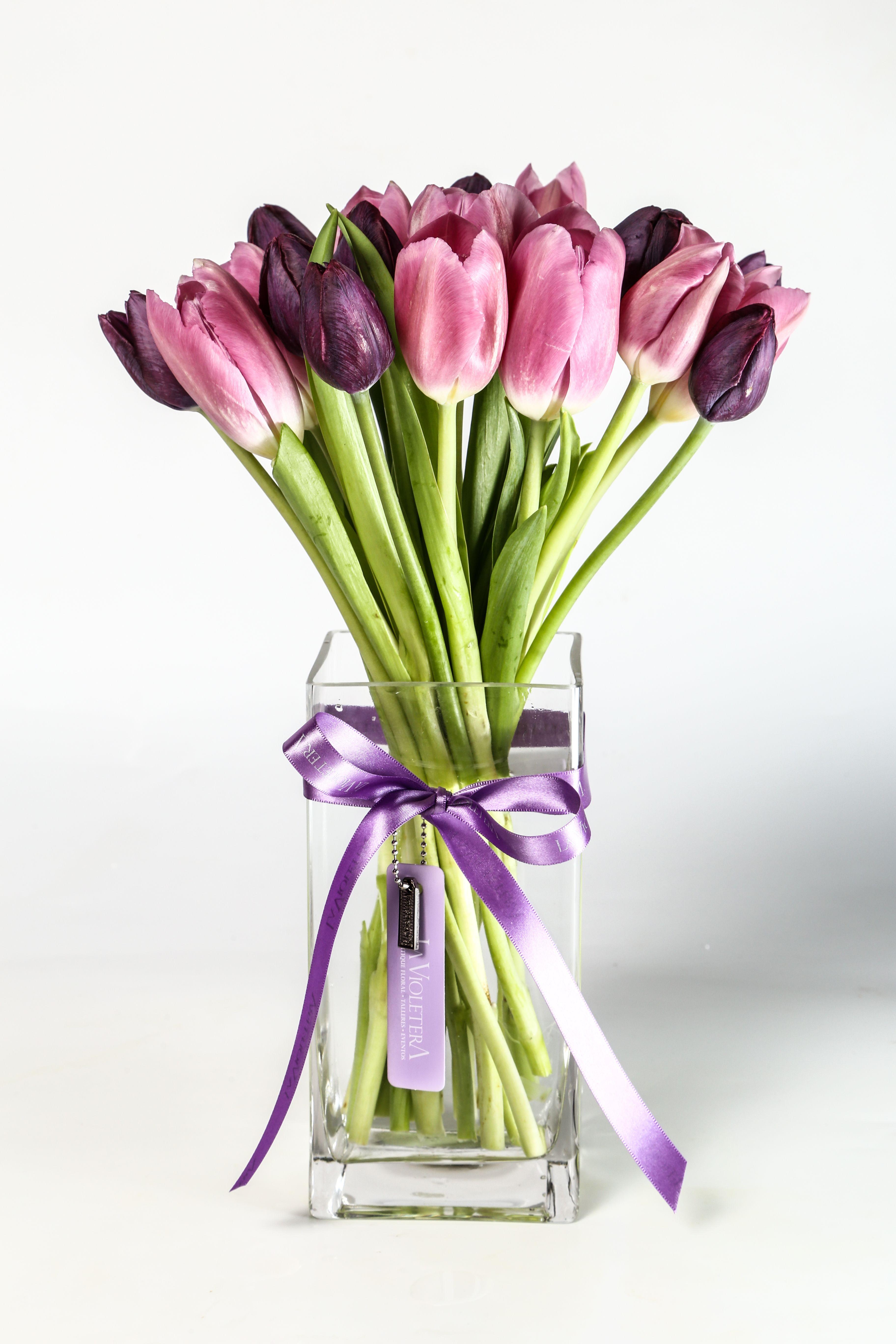 a4d5c372aab23 tulipanes en colores lilas y morados Tulipanes Rosas