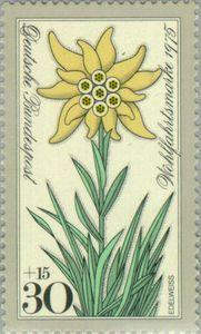 Stamp: Edelweiss (Germany, Federal Republic) (Welfare: Alpine flowers) Mi:DE 867,Sn:DE B521,Yt:DE 716,AFA:DE 1824