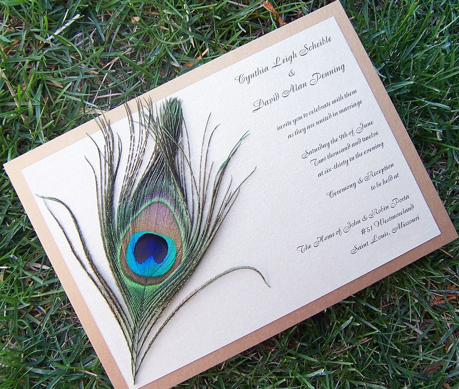 wedding invitations peacock theme%0A    Plume Quince Invitations  Say what     Quince InvitationsPeacock Wedding