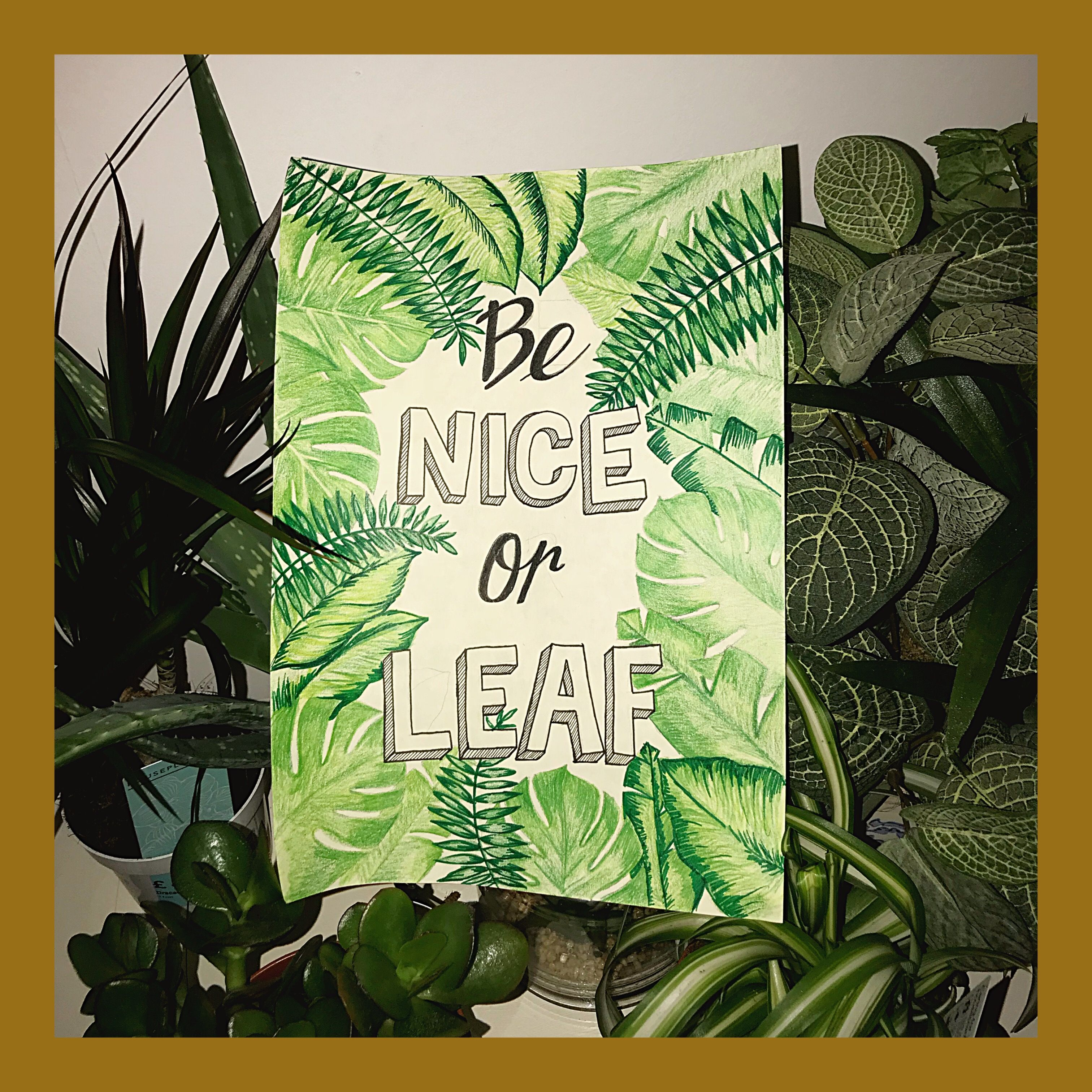 Tropical Leaf Be Nice Or Leaf Quote Which of the following adaptations would you least. tropical leaf be nice or leaf quote