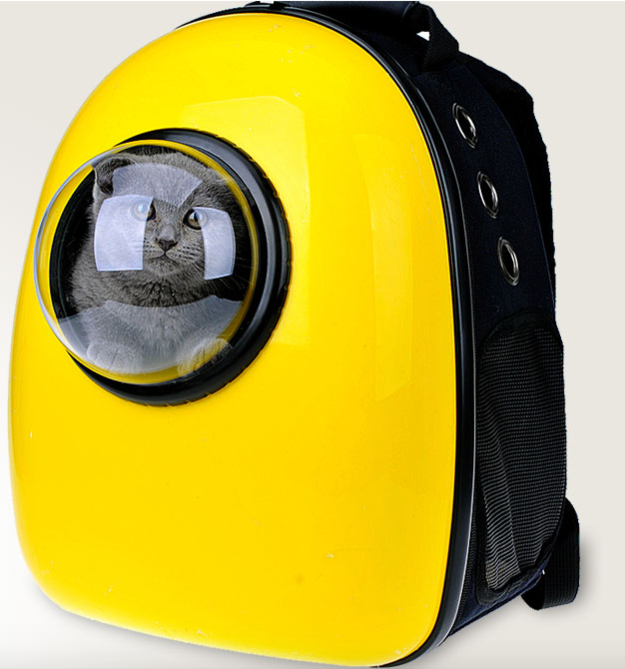 Which is why this new windowed backpack pet carrier is the answer to your prayers. | Now You Can Take Your Cat Literally Everywhere With This Genius Pet Carrier