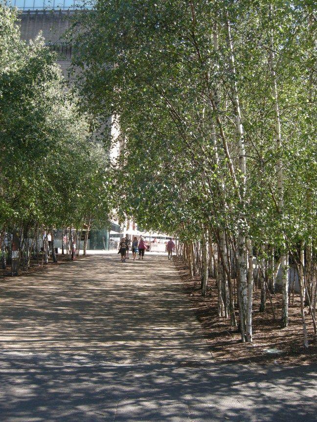 Tate Modern Riverside Public Realm Landscape Landscape Simple Landscape Design Modern Landscaping