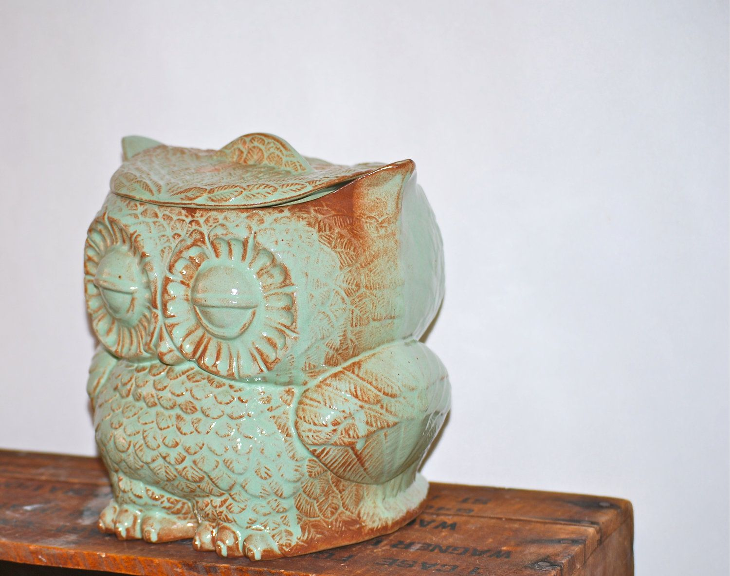 Rustic Cookie Jar Mesmerizing Owl Large Cookie Jar In Rustic Pistachio Green$6500 Via Etsy Review