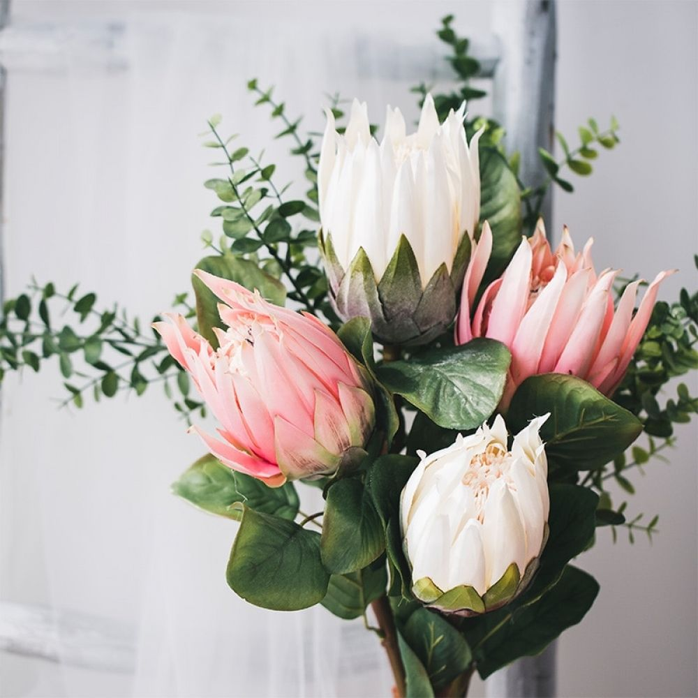 Pink And White King Protea Flower In 2020 Protea Flower King Protea Dried Flowers