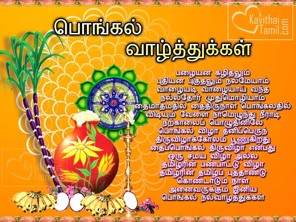 Download free beautiful tamil pongal greeting wishes images for send download free beautiful tamil pongal greeting wishes images for send this awesome pongal sms to your tamil people m4hsunfo