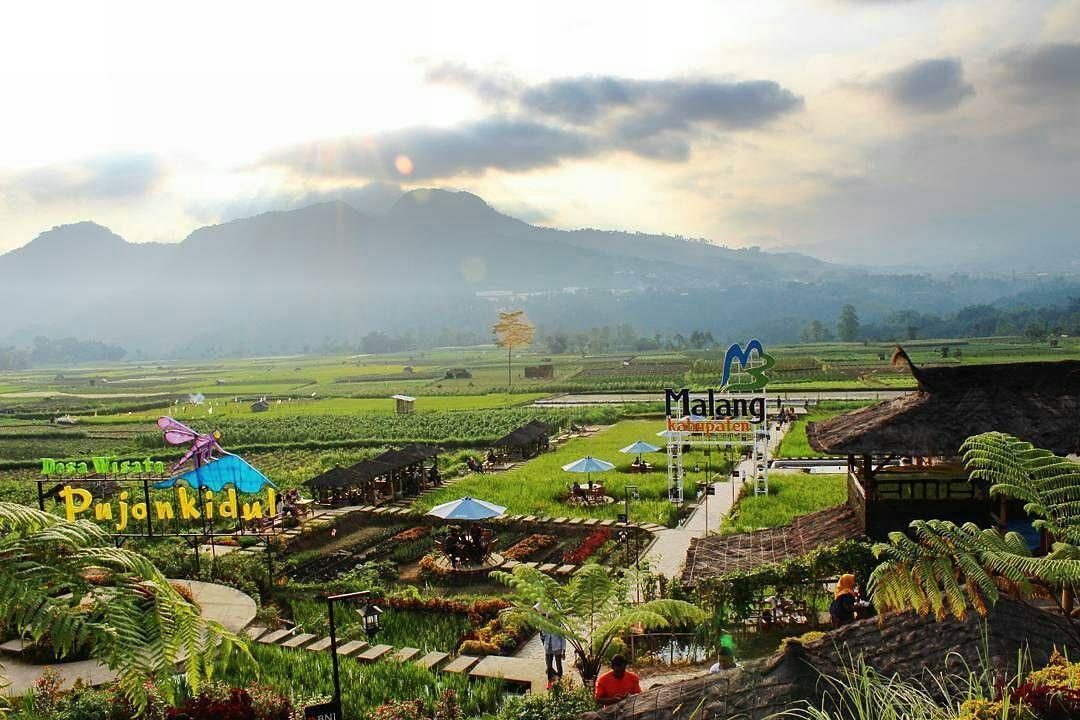 From Emildayusniya Yakin Enggak Mau Liburan Ke Malang Lagi Cafe Sawah Pujon Kidul Pedesaan Indonesia Liburan