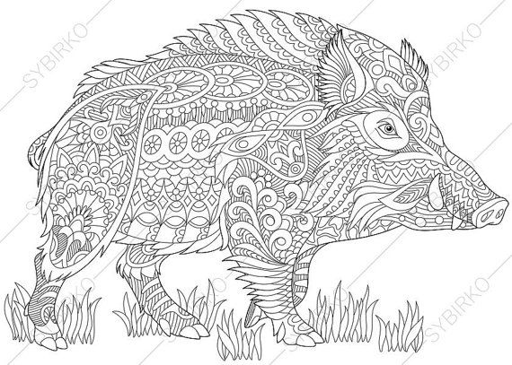 adult coloring pages wild boar pig zentangle doodle coloring book page for adults digital illustration instant download print