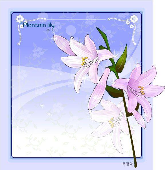 PLANTAIN LILY FLOWER FRAME VECTOR | cgspring | Pinterest | Flower ...