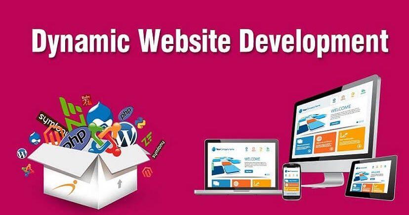 Dynamic Web Designing Company In Shamli Website Designing Company In Shamli Top Ranking Gra Web Development Design Website Development Website Design Company
