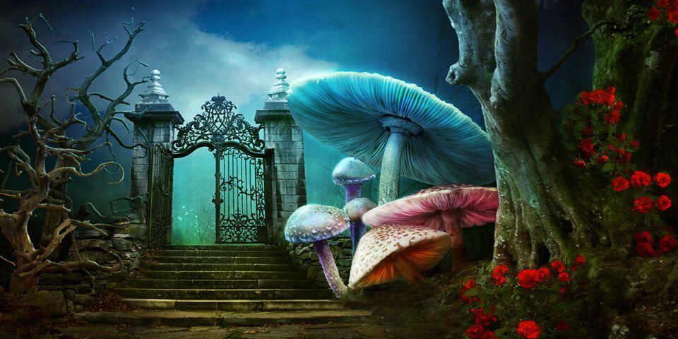 Alice Backdrop Avec Images Alice Au Pays Des Merveilles