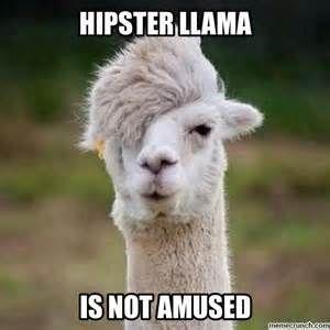 0542de6294f71db7556996c44195f7e1 llamas funny emo memes bing images lansen pinterest funny