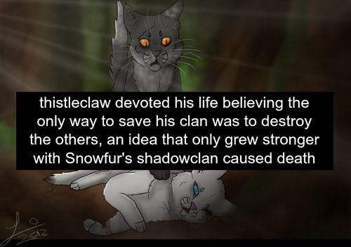 Warrior Cats Thistleclaw And Snowfur Like