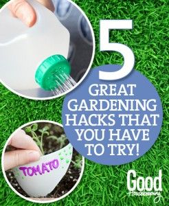 5 Great Gardening Hacks you Have to Try