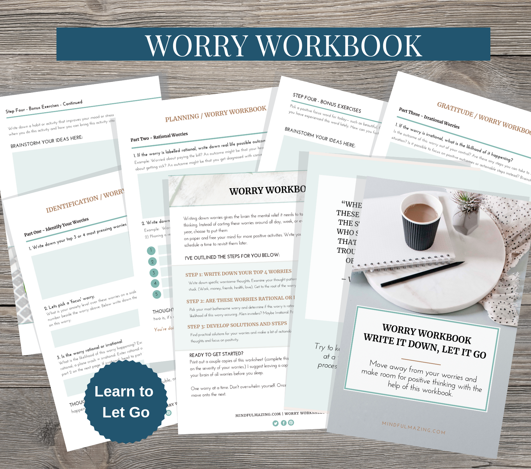Worry Workbook In