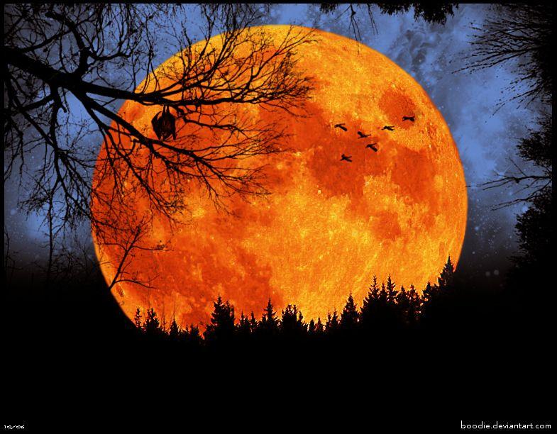 Full Moon Autumn Autumnal Equinox wINE mOON singing moon pagan wicca |  Beautiful moon, Moon pictures, Harvest moon