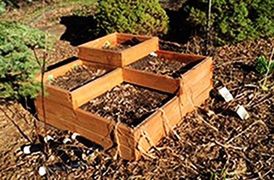 Diy Multi Level Raised Bed Raised Garden Beds Raised Garden Garden Beds