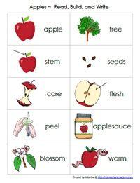 PreK and Kindergarten Apple Theme Ideas
