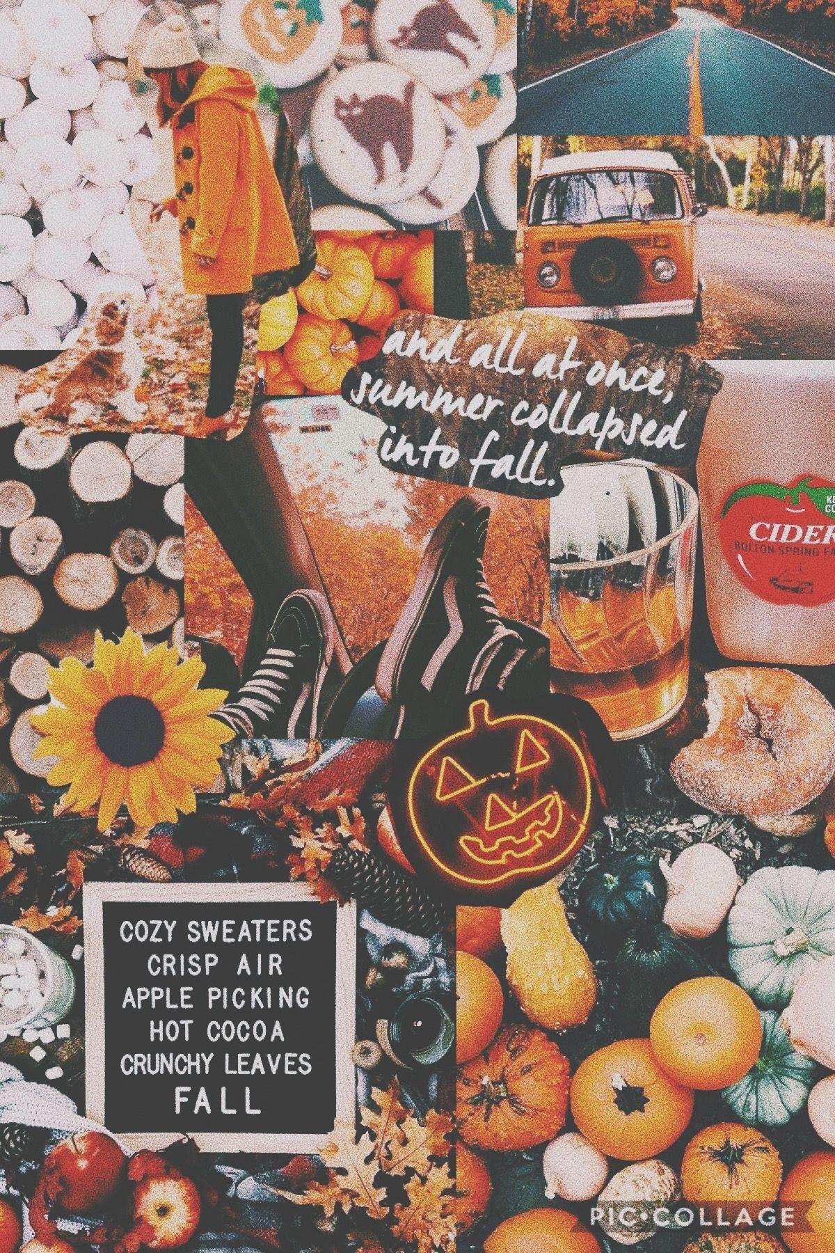 Halloween Aesthetic Wallpaper Basteln Funny Knutselen Fall Wallpaper Iphone Wallpaper Fall Cute Fall Wallpaper