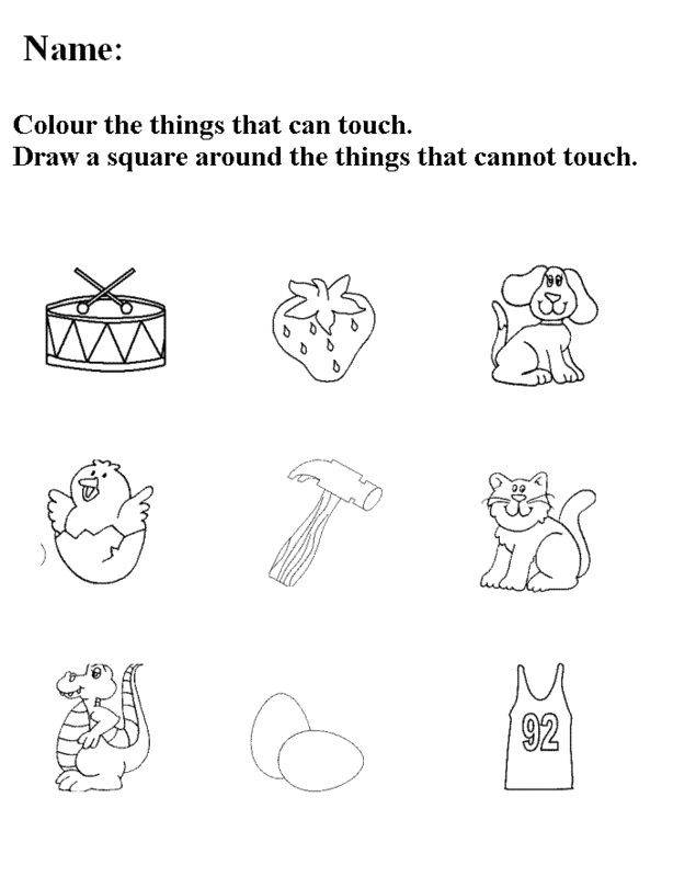 Five Senses Worksheets Crafts And Worksheets For Preschool Toddler And Kindergarten Senses Preschool Free Preschool Printables Five Senses Worksheet