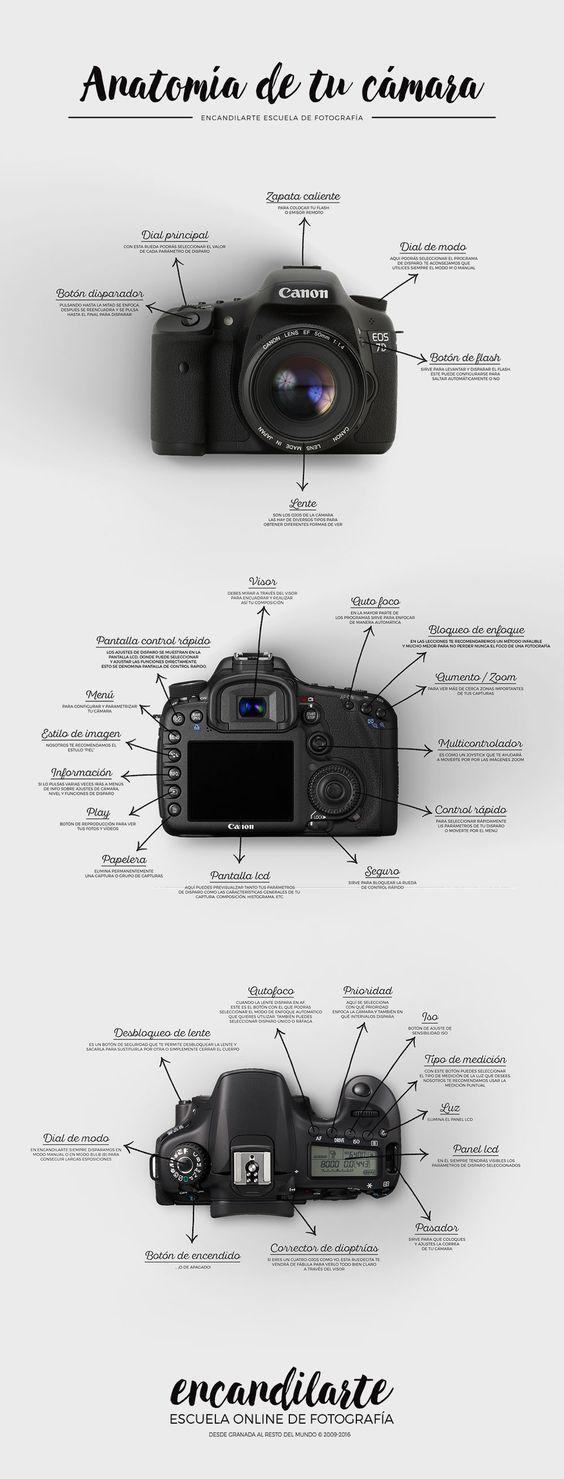 Geniales consejos de iluminacin y fotografa  Fotografia