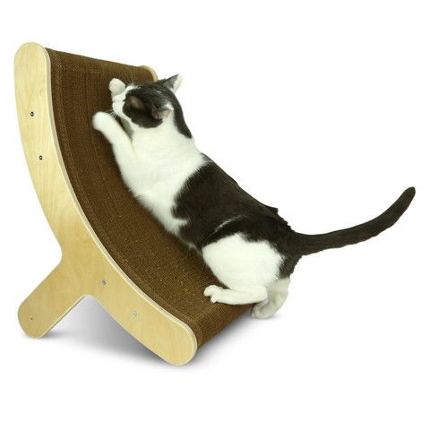 I might need to invest in expensive cat furniture. Holy god, who have I become?