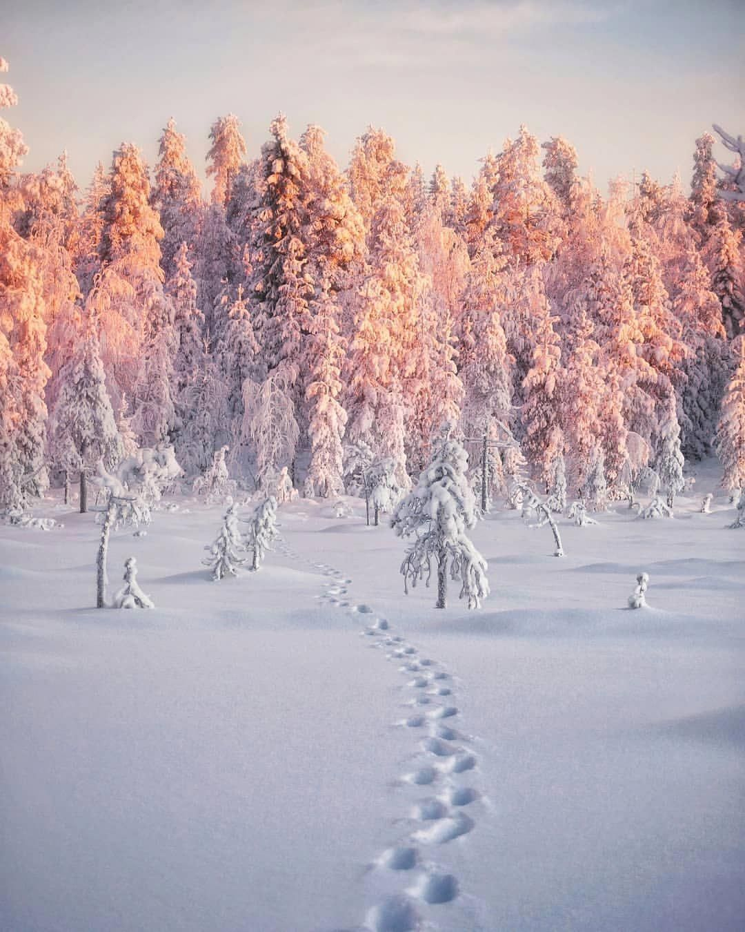 Beautiful Landscape Photography That Truly Are Gorgeous Beautifullandsc Winter Landscape Photography Landscape Photography Nature Winter Landscape