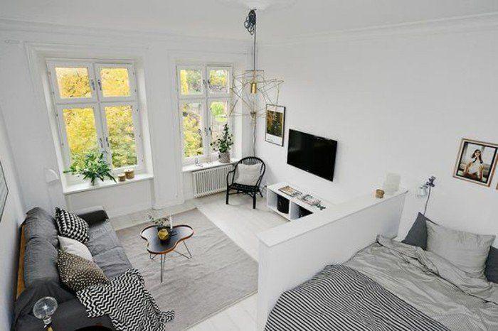 meubler un studio 20m2, amenagement petit espace, tapis gris, murs ...