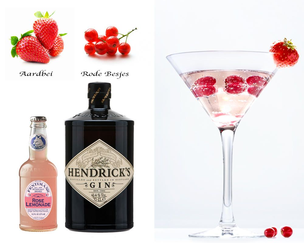 Hendrick 39 s rose cocktail recept gin tonic pinterest gin for Cocktail rose