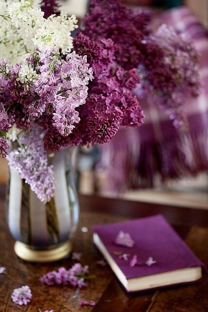Boulevard Of Dreams Flower Bouquet Wedding Amazing Flowers Lilac