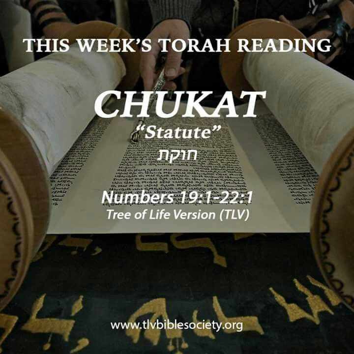 Pin By Sheila Neuburger On Torah Bible Society Torah Bible