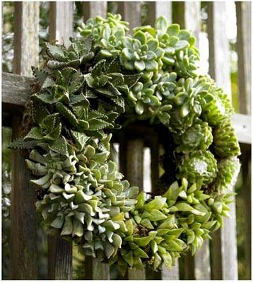 succulent wreath in green