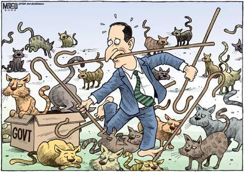 Like Herding Cats Herding Cats Cat Art Cats