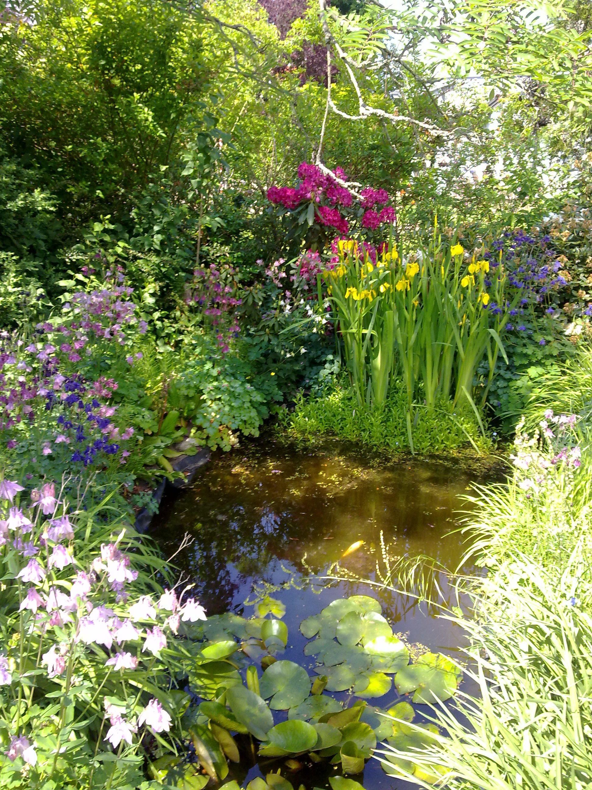 Sommer im Garten, da fehlt nur noch ein Glas Rotkäppchen ...