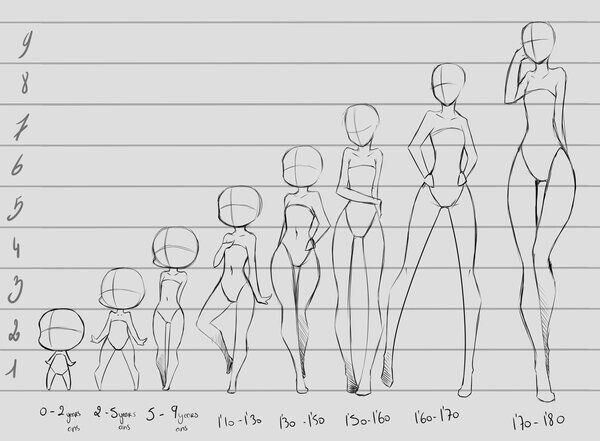 Age to body ratio | Drawings, Drawing tips, Art drawings