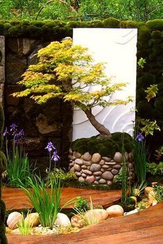 Diseño de jardin estilo japonès. La madera le imprime ese sello càlido.