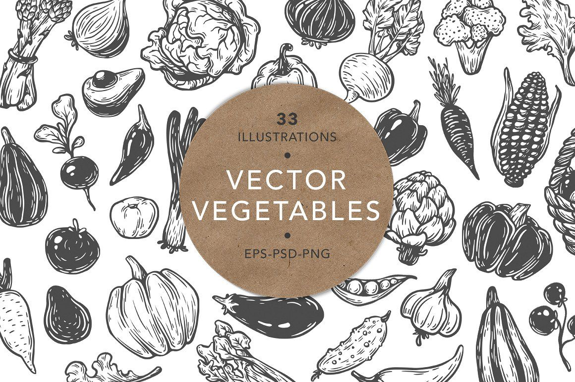 Vector Vegetables Illustrations Vegetable Illustration Vector Vegetables
